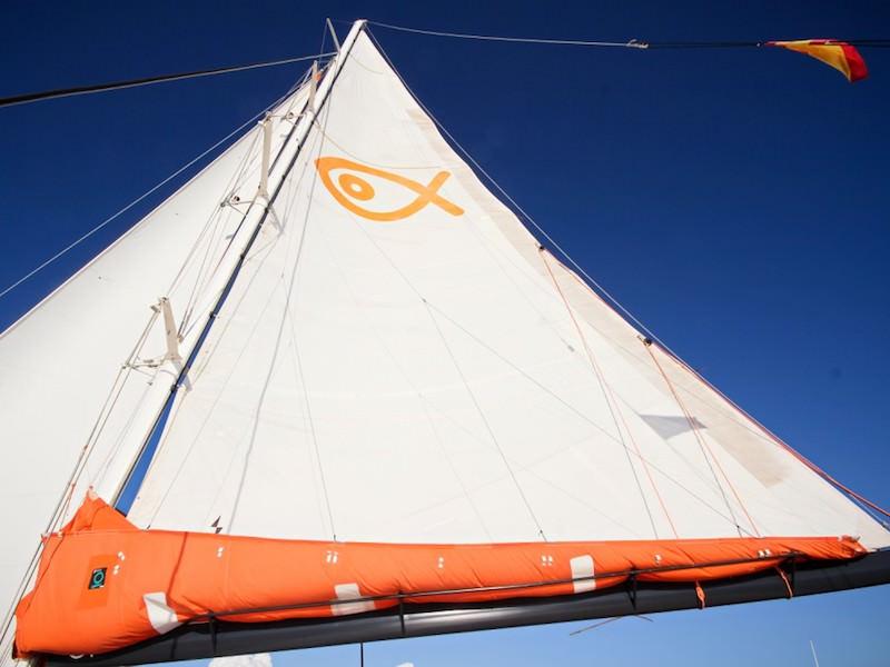 Catamaran 145